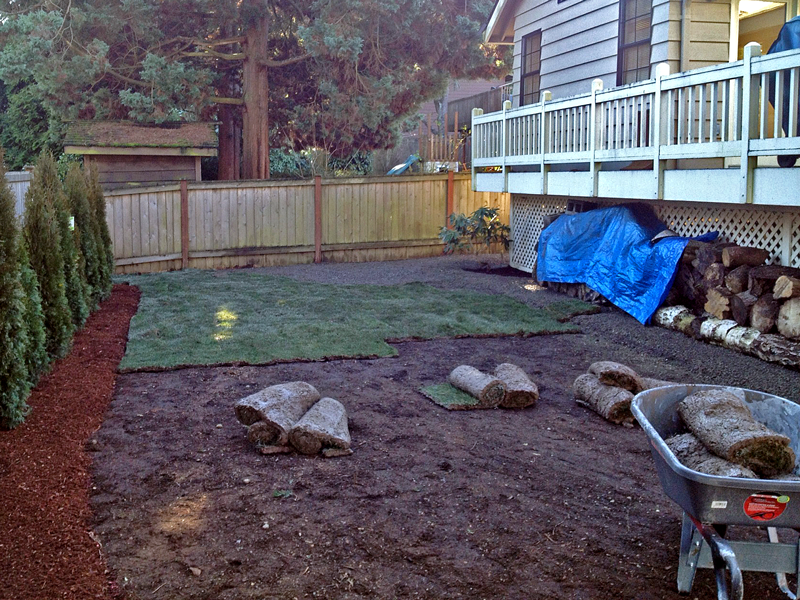Persnickety grass install