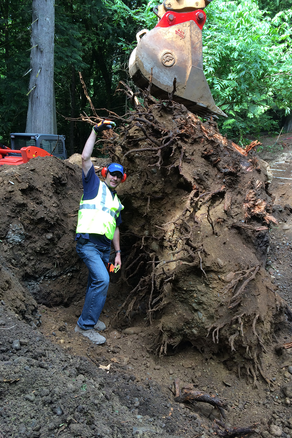 Persnickety tree root removal